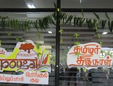 pongal61